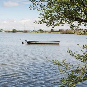 俺たちの川魚クラフト 写真
